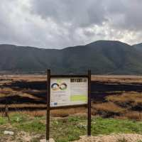 """Πυρκαγιά στη Στυμφαλία: """"Οικολογική Καταστροφή ή Οικολογική Παρέμβαση;"""""""
